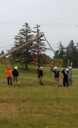 people near down powerline